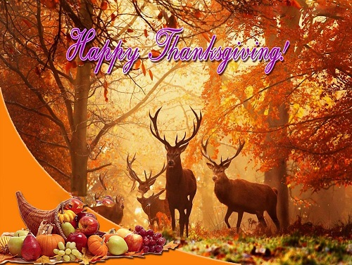Thanksgiving Pictures Download