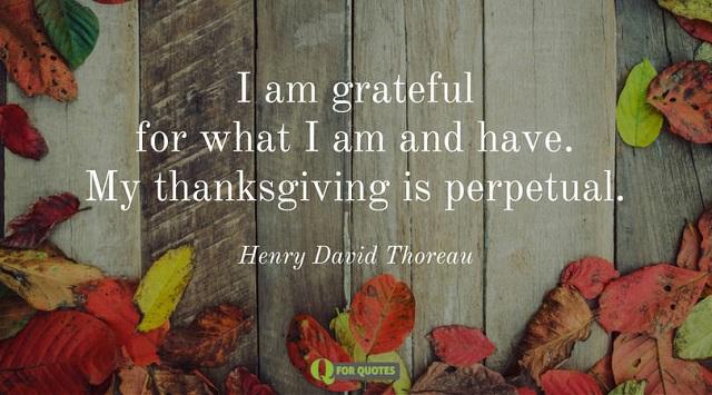 Happy Thanksgiving Gratitude Photos